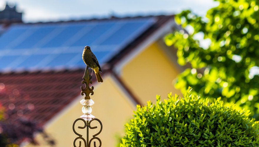 Zonnepanelen / Shutterstock