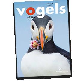 Cover tijdschrift Vogels