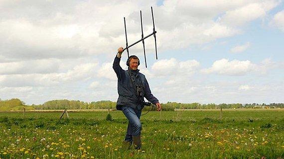 Onderzoek veldleeuwerik / Geert de Vries