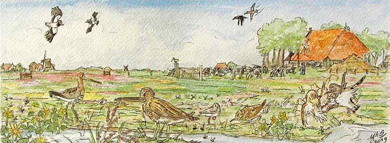 Boek Waterland / Ysbrand Galema