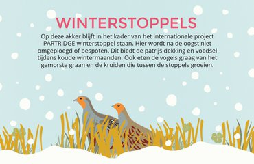 Infobord Winterstoppels PARTRIDGE