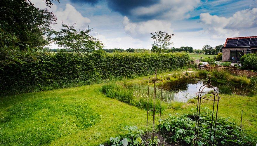 Tuin met vijver / Wil Leurs - Agami