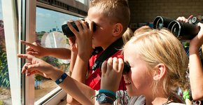 Vogels kijken Tuinvogeltelling / Janko van Beek