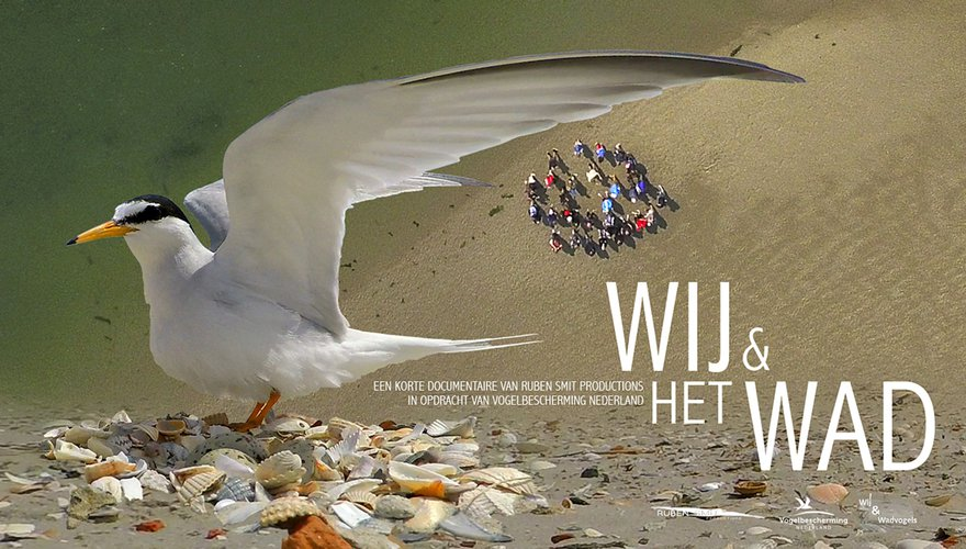 Poster Wij&hetWad / Vogelbescherming
