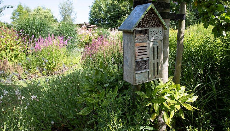 Tuin met insectenhotel / Fred van Diem