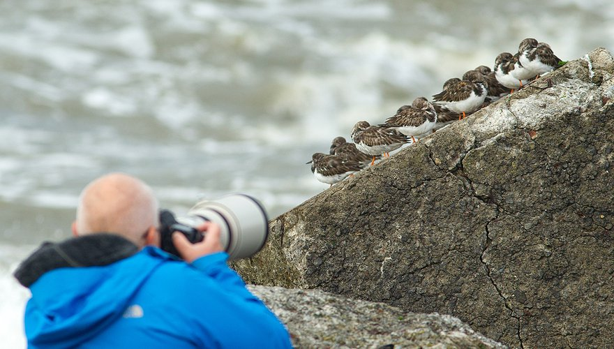 Fotograaf bij steenlopers
