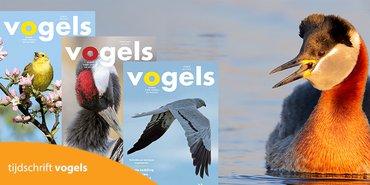 Tijdschrift Vogels