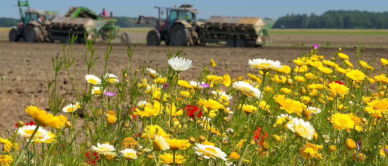 Landbouw / Shutterstock