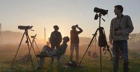 Telpost Birdwatch/ Hans van de Laar