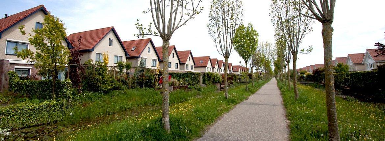 Stadsnatuur / Jouke Altenburg
