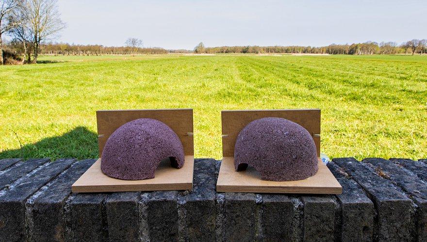 Kunstnesten huiszwaluw / Wil Leurs - Agami
