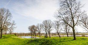 Loevestein / Shutterstock