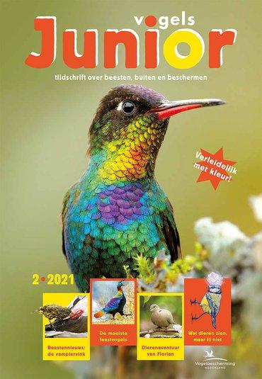 Cover Vogels Junior 02/2021