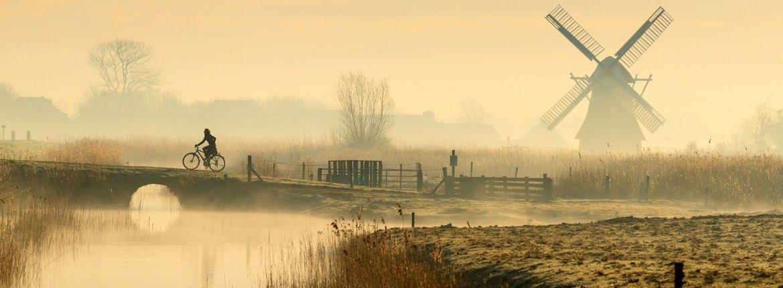 Fietser in polderlandschap / Shutterstock