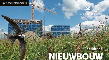 Download factsheet nieuwbouw