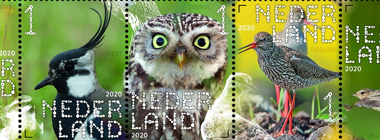 Postzegelvel boerenlandvogels