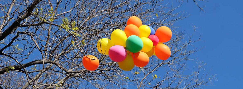 Ballonnen / Shutterstock