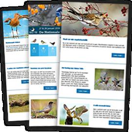 Vogels digitaal blok
