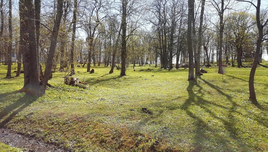 Landgoed park Estland / Cees Witkamp