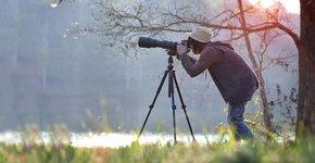 Vogels kijken / Shutterstock
