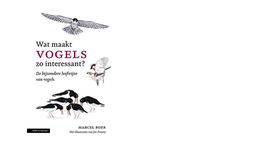 Cover Wat maakt vogels zo interessant?