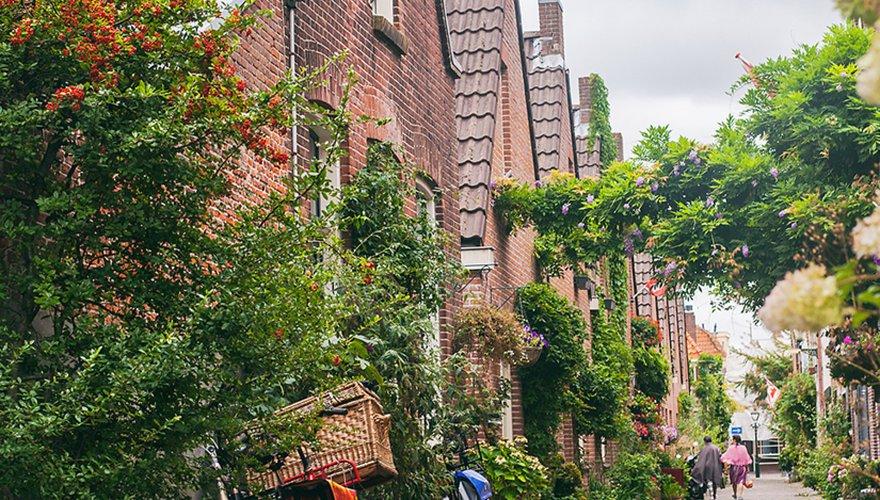 Stad / Shutterstock