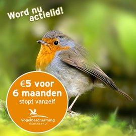 Word Actielid van Vogelbescherming