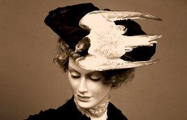 Dameshoed stern Vogelbescherming
