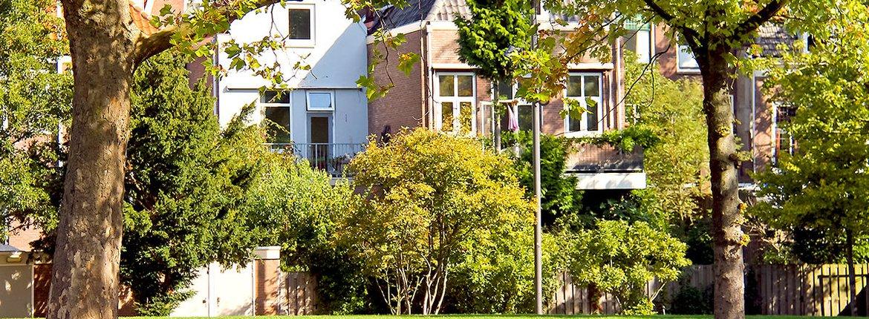 Stadsnatuur Dordrecht / Shutterstock