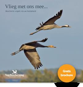 Cover brochure Nalaten