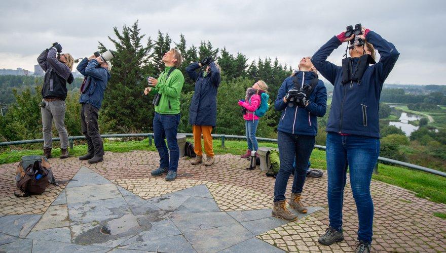 Vogels kijken / Gerrit de Heus