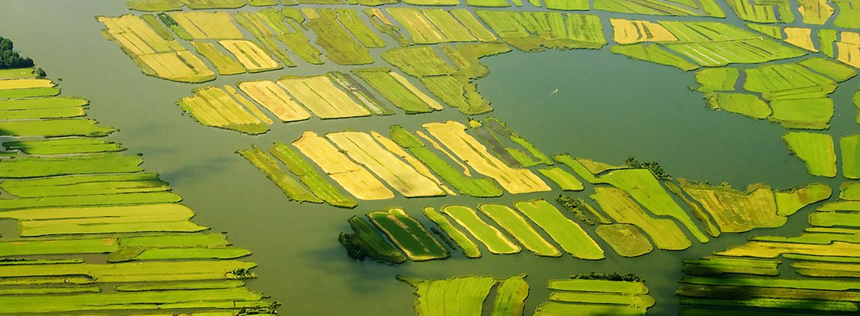 Hollandse landchap / Shutterstock