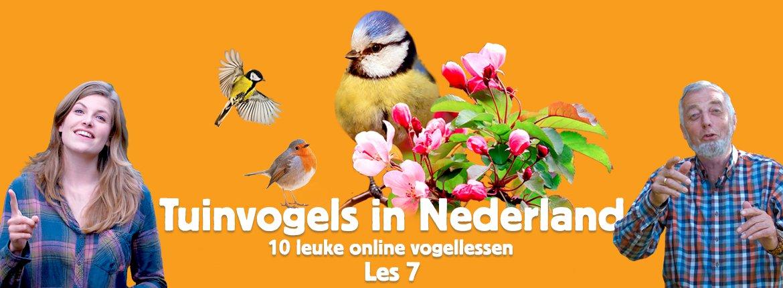 Header les 7 tuinvogelcursus