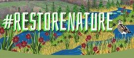 Logo #Restore Nature