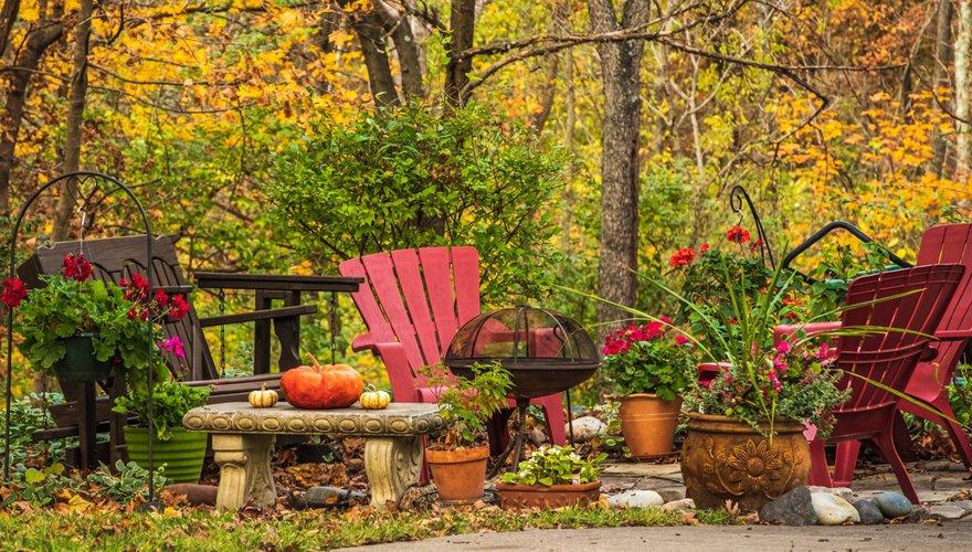 Tuin herfst / Shutterstock