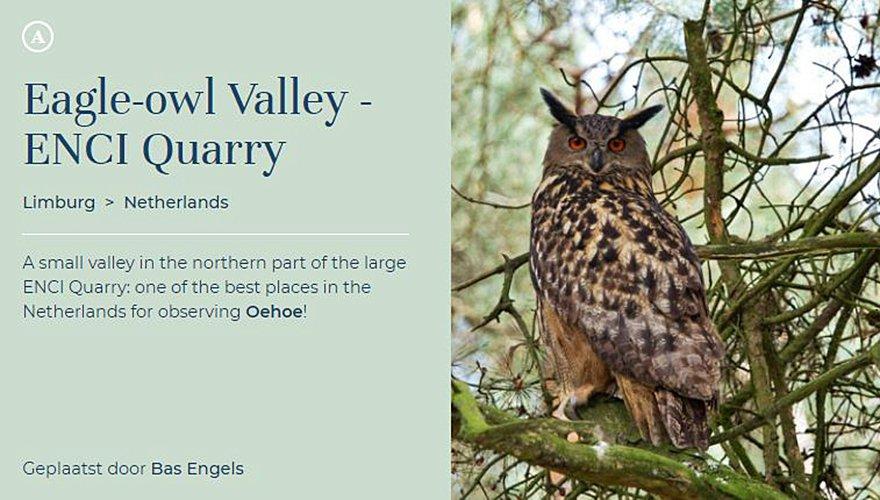 Oehoevallei / Birdingplaces