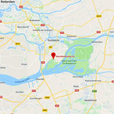 Huiszwaluwkolonie Zuid-Holland