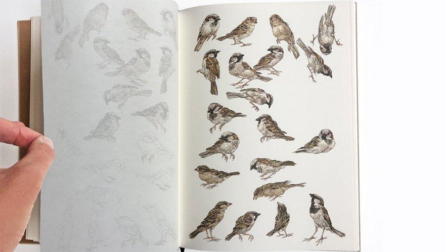 Spread huismussenboek