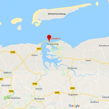 Huiszwaluwkolonie Groningen