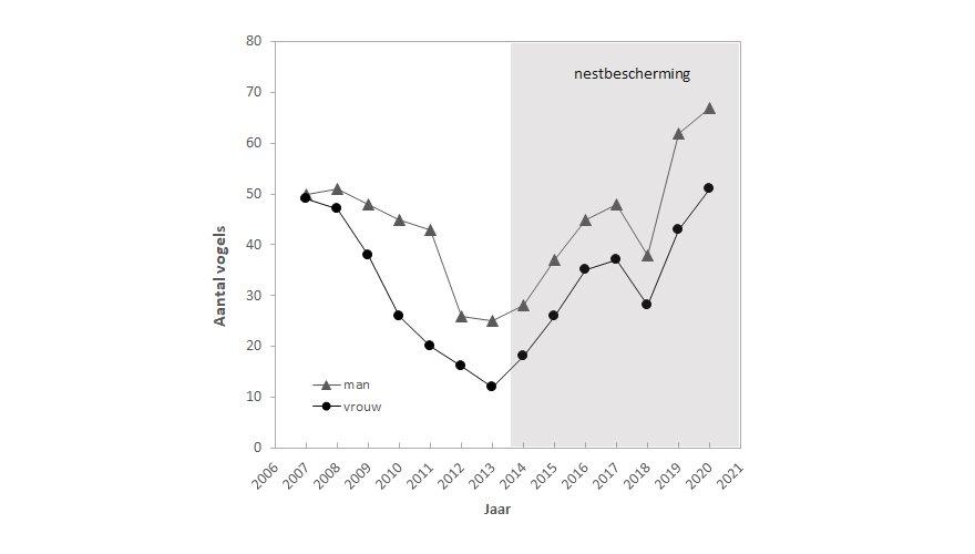 Grafiek aantal tapuiten