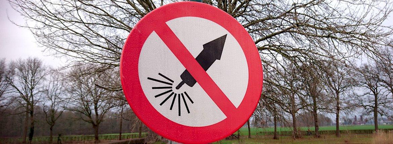Vuurwerkbord / Jeanet van Zoelen
