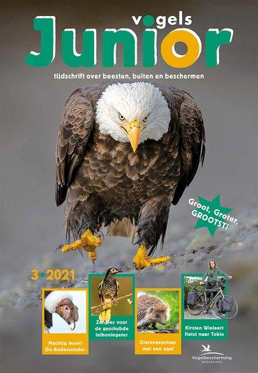 Cover Vogels Junior 03/2021