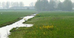 Landschap Kees Lambalk
