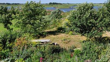 Natuur tuin / Ingeborg Lewis