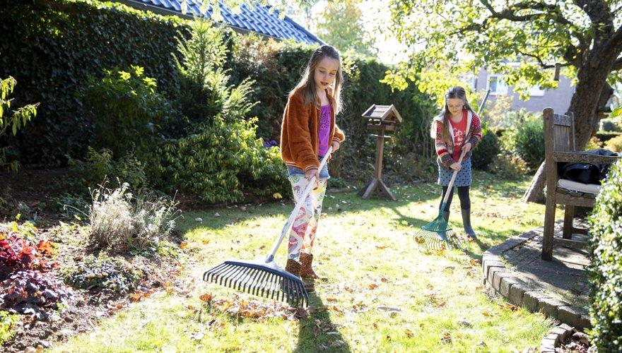 Blad tuin / Fred van Diem