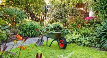 Tuin onderhoud / Shutterstock