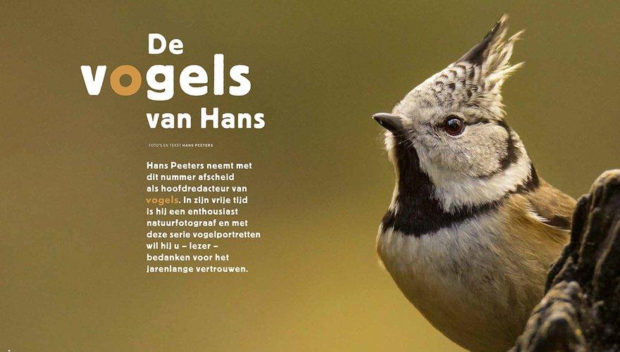 Vogels van Hans