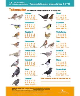 Telformulier tuinvogeltelling scholen