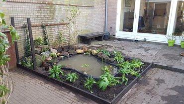 Vijver met planten / Hans Peeters