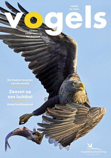 Cover Vogels 03/2021